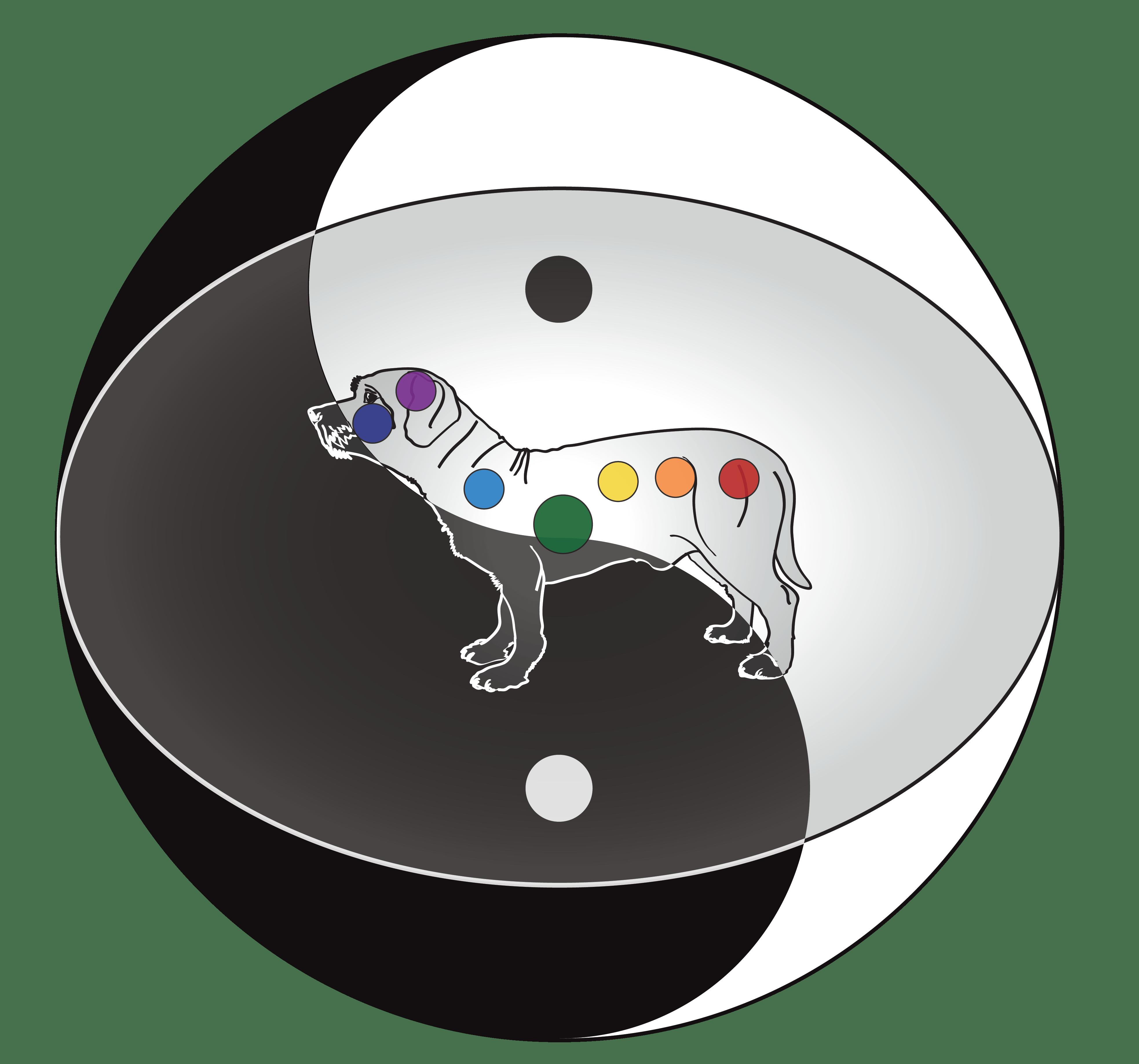 Whole Energy Body Balance - 7